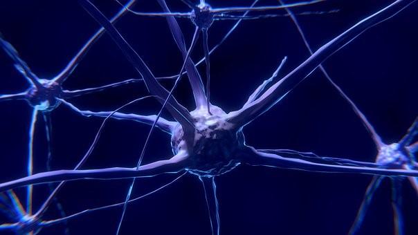 Lesiones en el sistema nervioso periférico